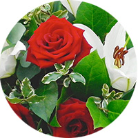 test-pastille8-fleur