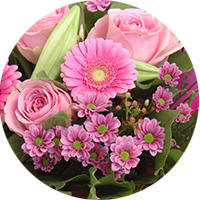 test-pastille9-fleur